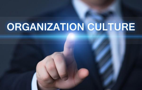 Budowa innowacyjnej kultury firmy
